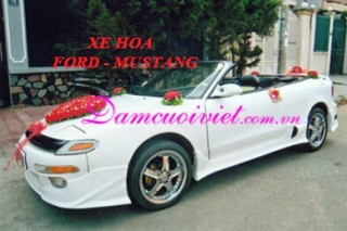 XE HOA FORD MUSTANG